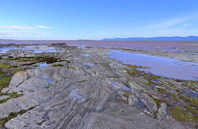 Poster featuring the photograph Low Tide On Saint Lawrence River by Cristina Stefan