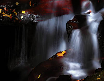 Lower Amicalola Falls Poster