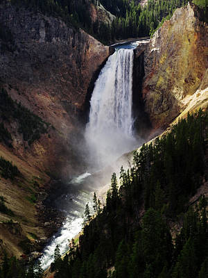 Lower Falls At Yellowstone Poster