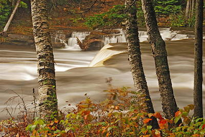 Lower Tahquamenon Falls 5 Poster by Michael Peychich
