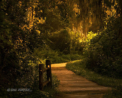 Loxahatchee Boardwalk Poster by Don Durfee