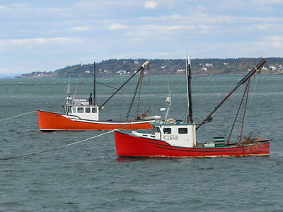 Poster featuring the photograph Lubec Lobster Boats by Francine Frank