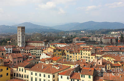 Lucca Aerial Panoramic View With Piazza Dell' Anfiteatro Poster by Kiril Stanchev