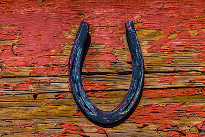 Lucky Rusty Horseshoe Poster by Garry Gay