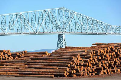 Lumber Mill In Rainier Oregon Poster