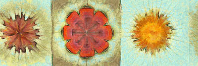 Lumme Fiber Flowers  Id 16165-044955-91880 Poster by S Lurk