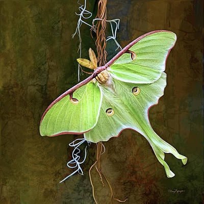 Poster featuring the digital art Luna Moth by Thanh Thuy Nguyen