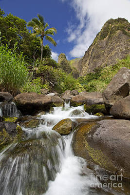 Lush Tropical Iao River Valley Poster