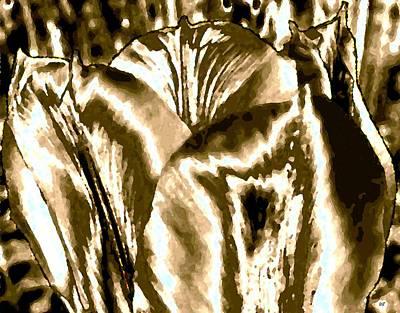 Lustrous Golden Tulip Poster by Will Borden