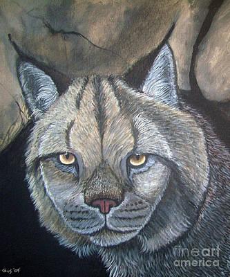 Lynx Poster by Nick Gustafson