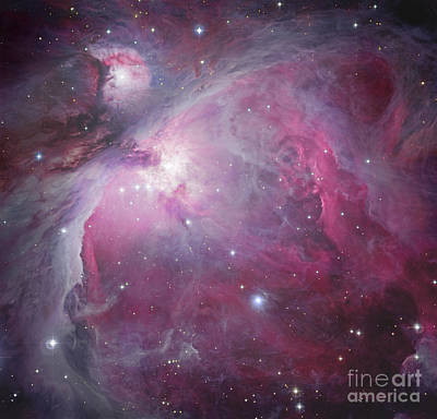M42, The Orion Nebula Poster by Robert Gendler
