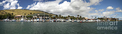 Maalaea Boat Harbor Poster by Dave Fleetham - Printscapes