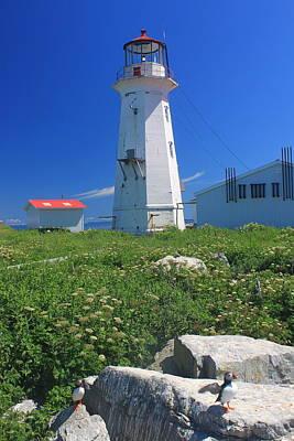 Machias Seal Island Lighthouse Puffins Poster by John Burk