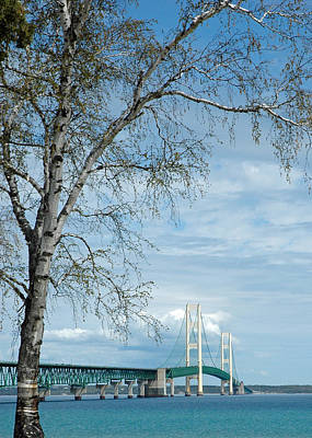 Mackinac Bridge Birch Poster by LeeAnn McLaneGoetz McLaneGoetzStudioLLCcom