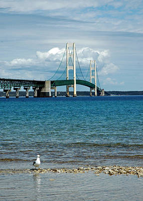 Poster featuring the photograph Mackinac Bridge With Seagull by LeeAnn McLaneGoetz McLaneGoetzStudioLLCcom