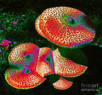 Magic Mushroom Poster by Valerie Lynn
