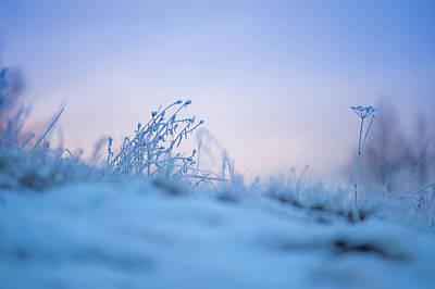Magic Winter Moments 2 Poster by Jenny Rainbow