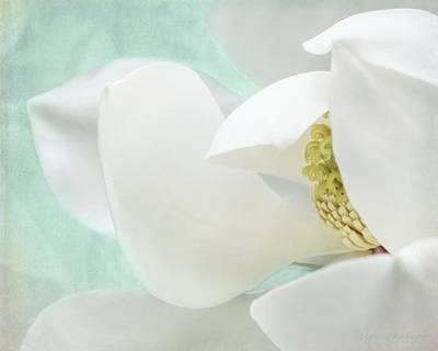 Magnolia Blossom, Soft Dreamy Romantic White Aqua Floral Poster