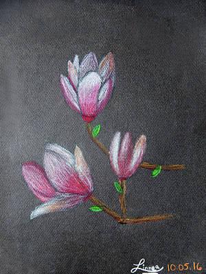 Magnolia Poster by Linnea Moshkovitz