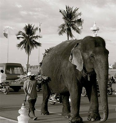 Poster featuring the photograph Mahout And Elephant by Louise Fahy