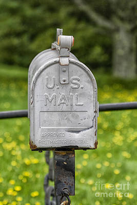 Mailbox Poster by Patricia Hofmeester