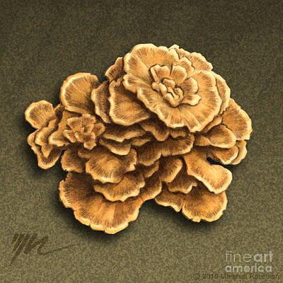 Maitake Mushroom Poster by Marshall Robinson