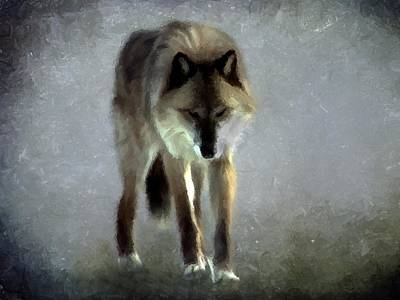 Poster featuring the photograph Majestic Wolf by David Dehner