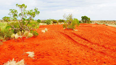 Making Tracks In The Dunes - Red Centre Australia Poster