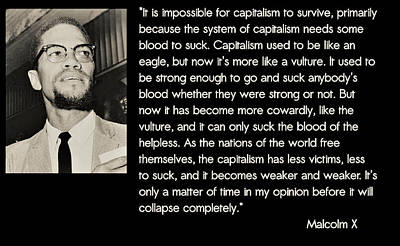 Malcolm X  On Capitalism And Vultures Poster