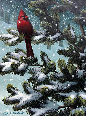 Male Cardinal Poster by Mark Mittlesteadt