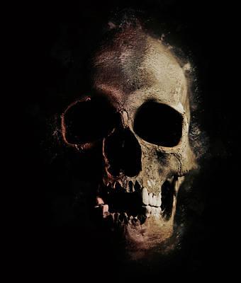 Male Skull With Missing Teeth Poster by Jaroslaw Blaminsky
