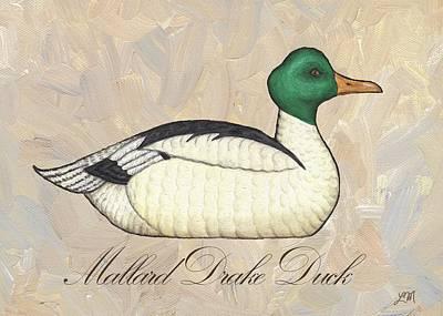 Mallard Drake Duck Poster by Linda Mears