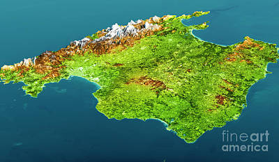 Mallorca Island Topographic Map 3d View Color Poster by Frank Ramspott