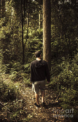 Man On Bush Walk Through North Tasmanian Forest Poster
