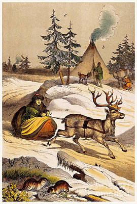 Man Riding Reindeer-drawn Sleigh Poster by Wellcome Images