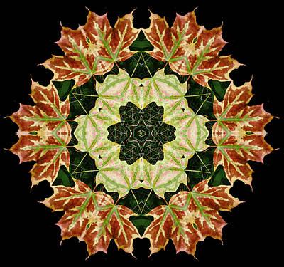 Mandala Autumn Star Poster