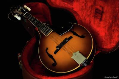 Mandolin Guitar 66661 Poster