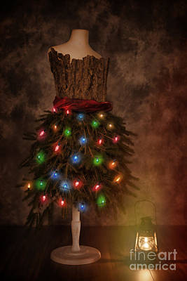 Mannequin Dressed For Christmas Poster by Amanda Elwell