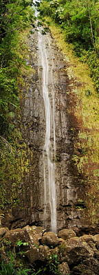 Manoa Falls Poster by Michael Peychich