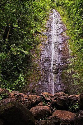 Manoa Waterfall Poster by Marcia Colelli