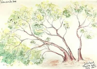 Poster featuring the painting Manzanita Tree by Maria Langgle