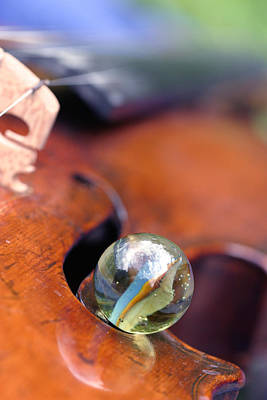 Marble On Violin Poster