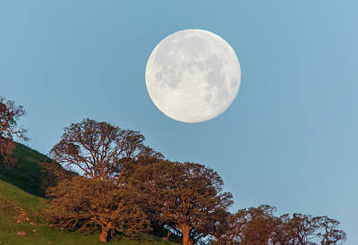 Poster featuring the photograph March Moonset by Marc Crumpler