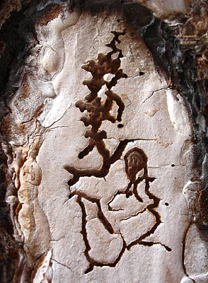 Martian Dance - Tree Bark Art Poster