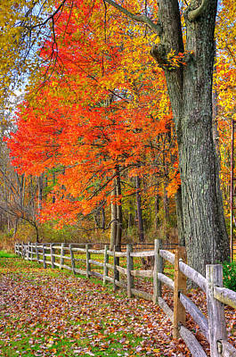 Maryland Country Roads - Autumn Colorfest No. 11 - Eylers Valley Catoctin Mountains Frederick County Poster