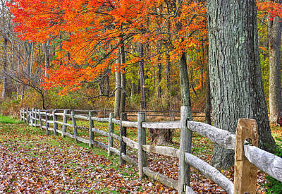 Maryland Country Roads - Autumn Colorfest No. 12 - Eylers Valley Catoctin Mountains Frederick County Poster