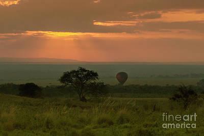Poster featuring the photograph Masai Mara Balloon Sunrise by Karen Lewis