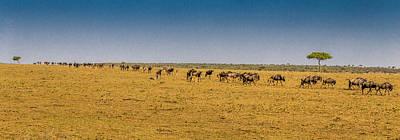 Masai Mara Road Trip Poster