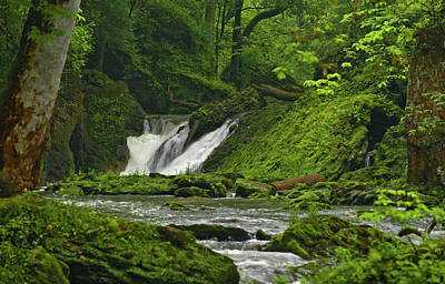 Poster featuring the photograph Massie Creek Falls by Rick Hartigan