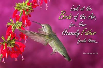 Matthew 6 26 Poster